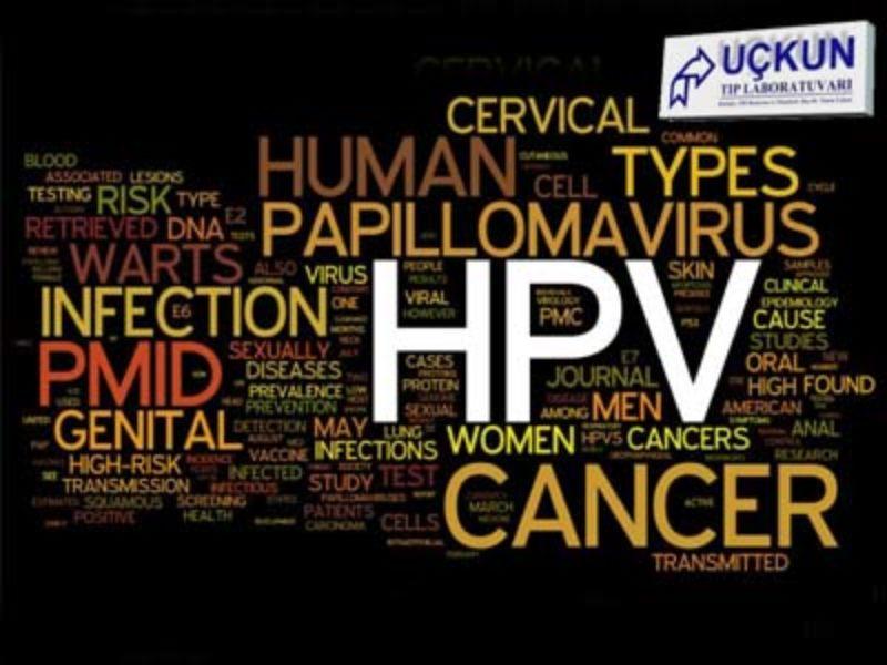 HPV (HUMAN PAPILLOMA VİRÜS)