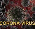 KORONAVİRÜS (Coronavirus) COVID-19 (2019-nCoV)