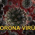 KORONA (Corona) VİRÜS (2019-nCoV)